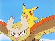 EP204 pikachu y Noctowl