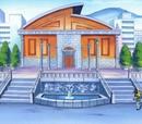 Gimnasio Pokémon de Ciudad Verde