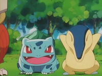 Archivo:EP157 Bulbasaur y Cyndaquil.png