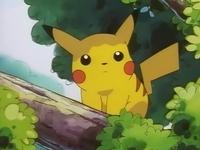 Archivo:EP039 Pikachu observando desde un árbol.png