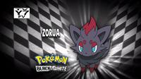 EP700 Quién es ese Pokémon.png