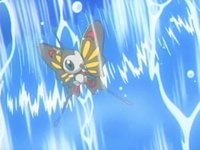 Archivo:EP548 Beautifly atrapado entre paredes de agua.png