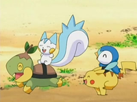 Archivo:EP534 Turtwig, Pachirisu, Piplup y Pikachu jugando.png