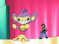 EP480 Aipom (4).png