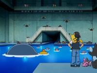Archivo:EP578 Comunidad e Pokémon (2).png