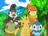 Archivo:EP550 Staravia, Buizel, Turtwig, Pikachu y Piplup.png