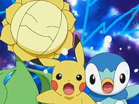 Archivo:EP505 Sunflora, Pikachu y Piplup.png