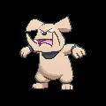 Reporte de torneo: 3er Torneo Monotype de Pokémon Zaragoza - 1er puesto Latest?cb=20140125200534