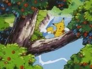 EP039 Pikachu cogiendo una manzana.png