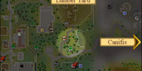 Runa de tierra