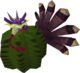 Pavo como un cactus