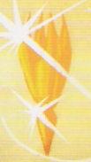 Archivo:Solaricrystal.jpg
