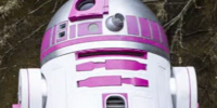 R2-KT