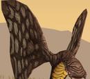 Mariposa corelliana