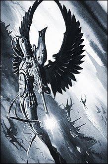 Swooping Hawks 2.jpg