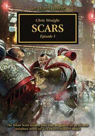Novela scars 1