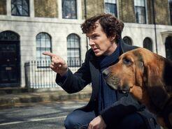 ES TV Guide Q1 2017 - Sherlock 1