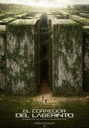 w:c:cine:El corredor del laberinto