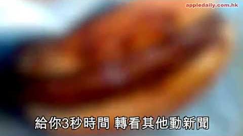咖喱漢堡似淝淝 攝影比賽夠騎呢