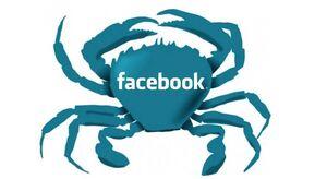Facebook crab.jpg