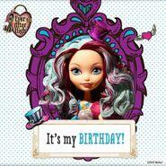 Facebook - Maddie's birthday