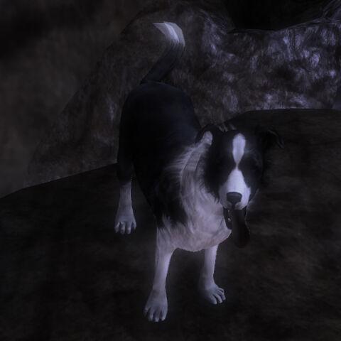File:Fable3.dog.morph.neutral.jpg