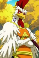 Kawazu's appearance