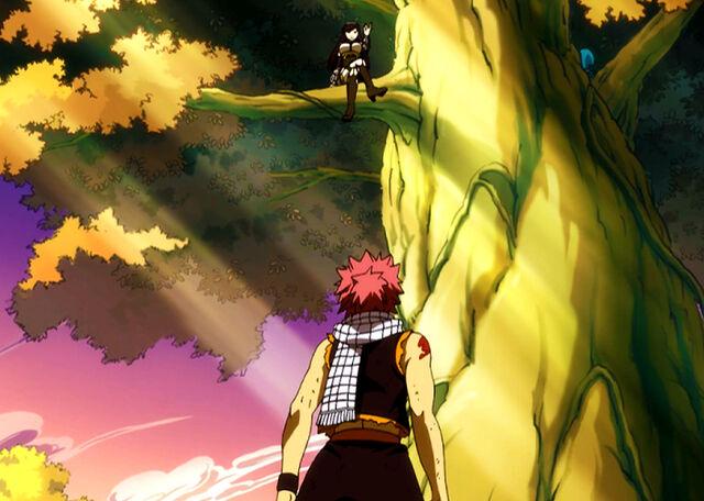 File:Natsu encounters Ultear.jpg