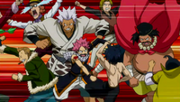 Fairy Tail brawl