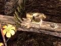 Thumbnail for version as of 23:32, November 29, 2012