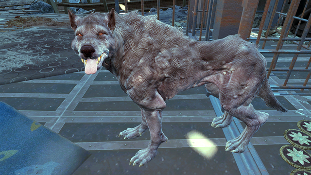 File:FO4FH Mishka.png