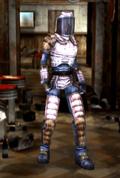 FOBOS Riot armor