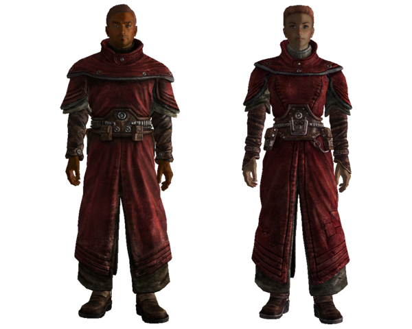 File:Fo3 Brotherhood Scribe.png