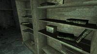 FO3 Coin Collection