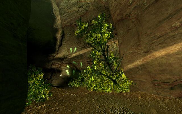 File:Fallen Rock Cave.jpg