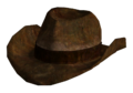 Ranger brown hat