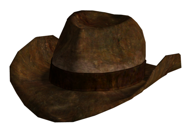 File:Ranger brown hat.png