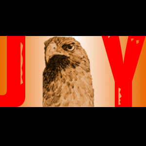 File:Jayhawky.png