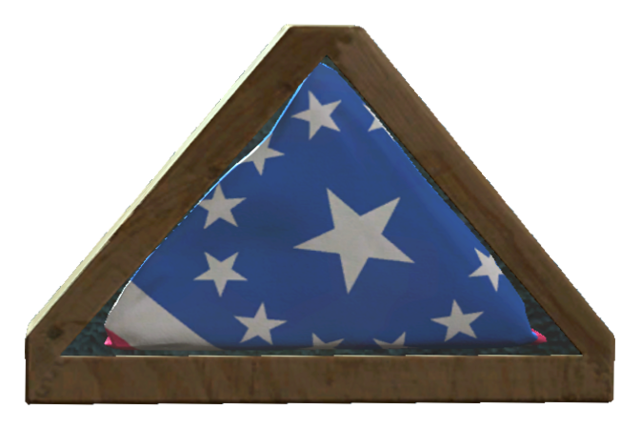 File:Undamaged American flag.png