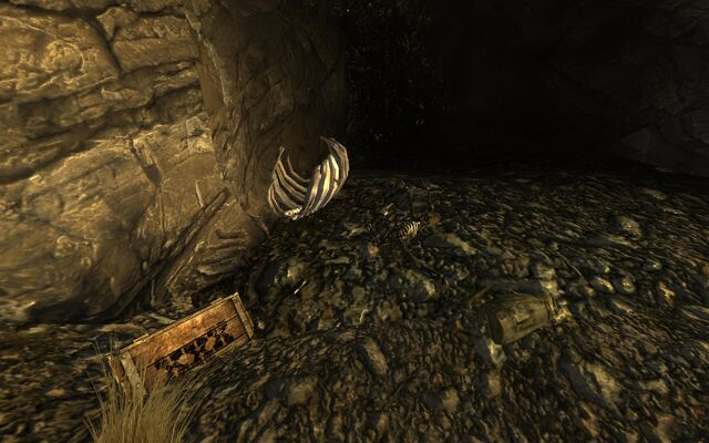 File:Cazador nest loot.jpg