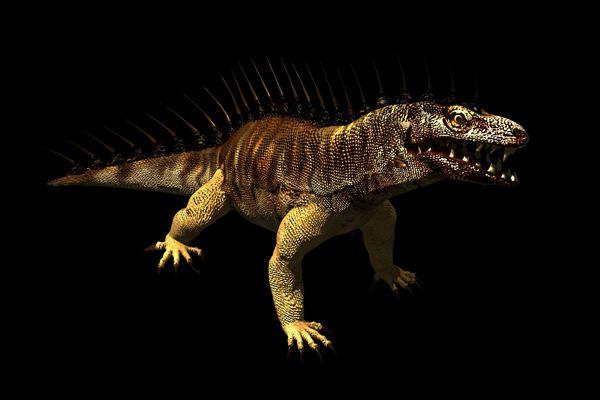 File:Komodo dragon render.jpg