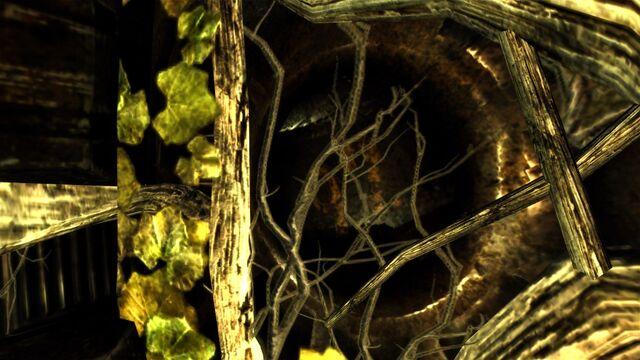 File:Vault 22 Door detail.jpeg