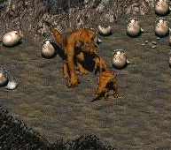 File:FO02 NPC MotherDeathclaw.png