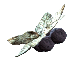 File:Wild tarberry.png