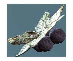 Wild tarberry