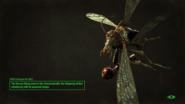 File:FO4 Stingwing loading screen.jpg