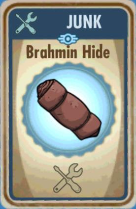 File:FoS Brahmin hide Card.jpg