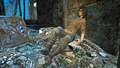 FO4NW Ophelia.png