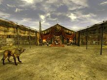 Caesars tent interior