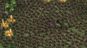 File:Zerg Rush.jpeg